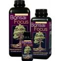Bonsai Focus 100ml